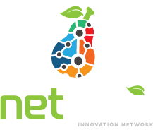 NetPear